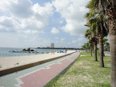沖縄に移住して半年
