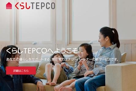 TEPCOのポイントはお得?1年でいくら貯まったのか確認してみたよ